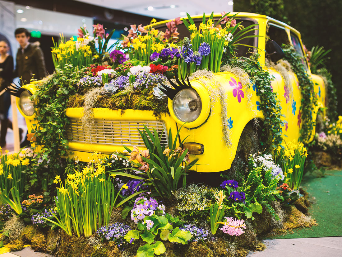 Floral Expo 2015